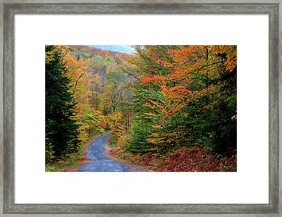 Framed Print featuring the photograph Road Through Autumn Woods by Larry Landolfi