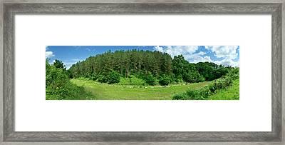 Road Through Forest Framed Print