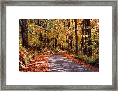 Framed Print featuring the photograph Road Through Woods by Larry Landolfi