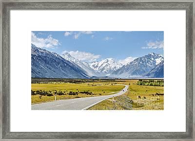 Road To Aoraki Framed Print