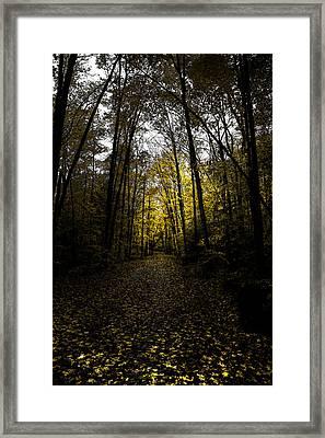 Road To Cary Lake II Framed Print