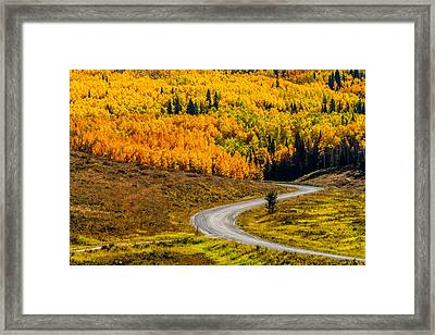 Road To Fall Color Framed Print by Teri Virbickis