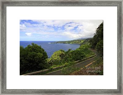 Road To Hana Framed Print