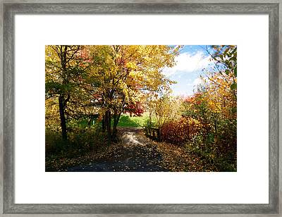 Road To Happyness Framed Print by Jocelyne Choquette