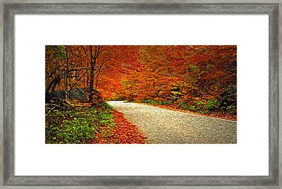 Framed Print featuring the photograph Road To Nowhere by Bill Howard