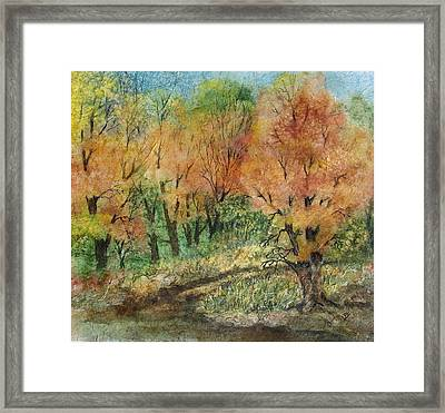 Road To Serenity Framed Print