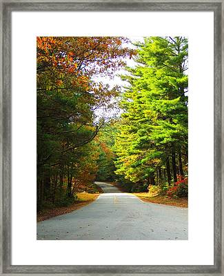 Road To The Chapel Framed Print by Judy  Waller