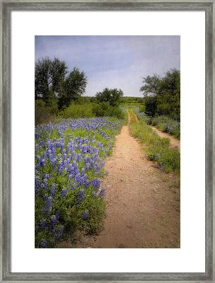 Road To The North Forty Framed Print by David and Carol Kelly