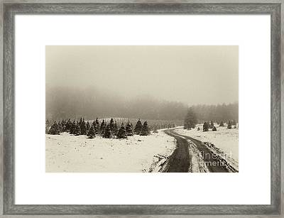 Road To The Past- D008689-bw Framed Print