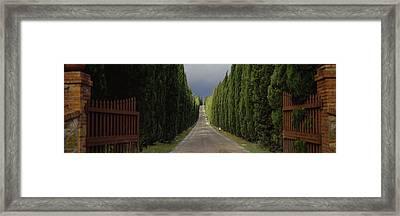 Road, Tuscany, Italy Framed Print