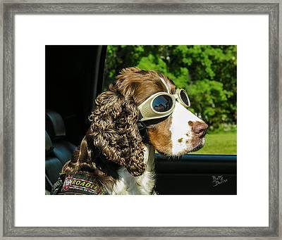 Framed Print featuring the photograph Roadie by Betty Denise