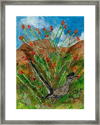 Roadrunner And Ocotillo Framed Print