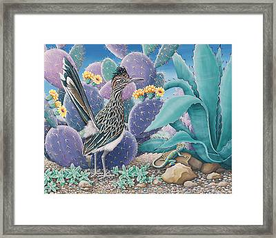 Roadrunner Framed Print