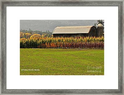 Roadside Barn Framed Print