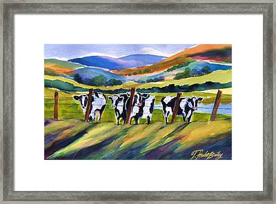 Roadside Cows Near San Luis Framed Print by Therese Fowler-Bailey