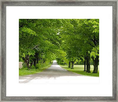 Roadway Framed Print by Susan Crossman Buscho