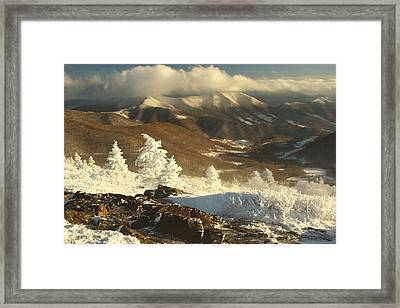 Roan Highlands Framed Print by Adam Paashaus