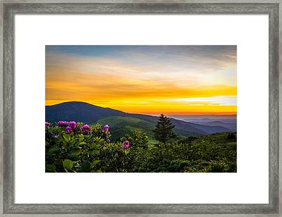 Roan Mountain Sunset Framed Print