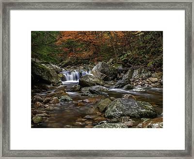 Roaring Brook - Sunderland Vermont Autumn Scene  Framed Print