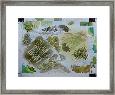 Roaring Fork Falls - Working Notes  Framed Print