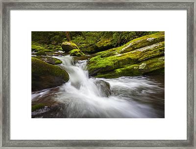 Roaring Fork Great Smoky Mountains National Park Cascade - Gatlinburg Tn Framed Print by Dave Allen