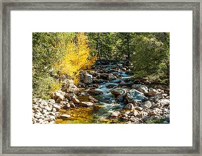 Roaring River 1-7782 Framed Print by Stephen Parker
