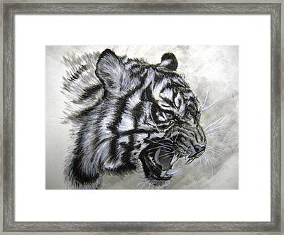 Framed Print featuring the drawing Roaring Tiger by Lori Ippolito
