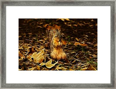 Robbie The Squirrel -1554 F Framed Print by James Ahn