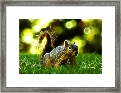 Robbie The Squirrel - 7376 - F Framed Print