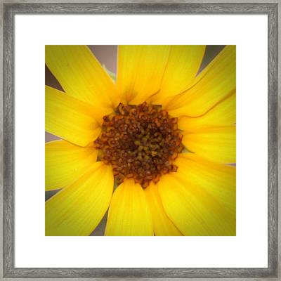 Robert Melvin - Fine Art Photography - Into The Middle Framed Print