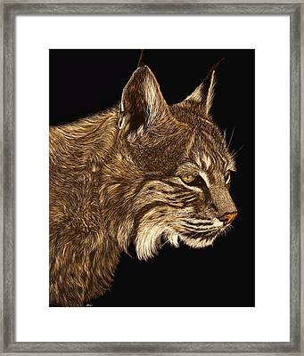 Roberta Framed Print by Heather Ward