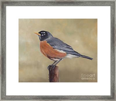 Robin Framed Print by Charlotte Yealey