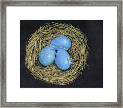 Robin Eggs In Nest Framed Print by Joyce Geleynse