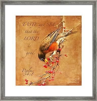 Robin Psalms Thirty-four Framed Print