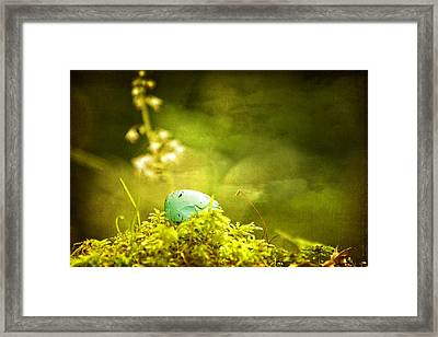 Robin's Egg On Moss Framed Print by Peggy Collins