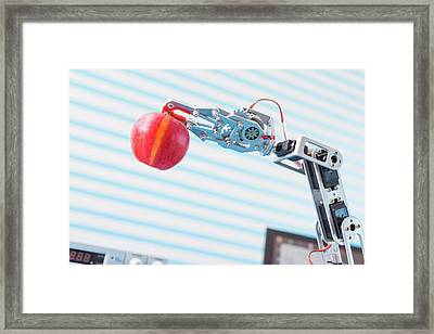 Robotic Arm Holding Apple Framed Print by Wladimir Bulgar