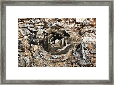 Rock And Rose 2 Framed Print by Evgeniy Lankin