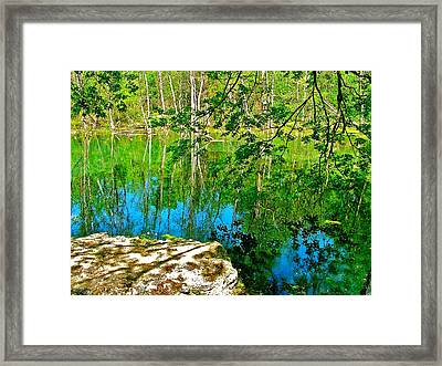 Rock And Spring On Rock Spring Trail Near Natchez Trace Parkway-alabama  Framed Print by Ruth Hager
