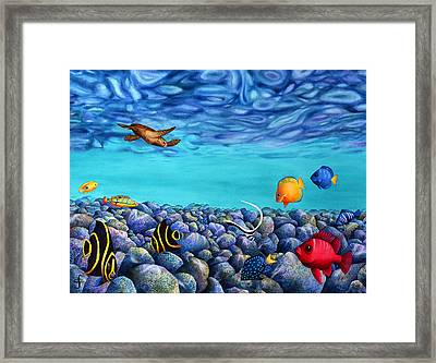 Rock Beauties Framed Print by Carolyn Steele
