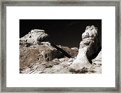 Rock Chatter Framed Print by John Rizzuto