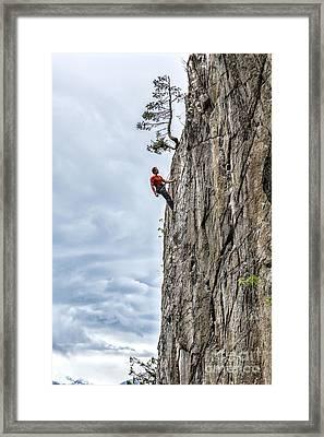 Rock Climber Framed Print by Carsten Reisinger