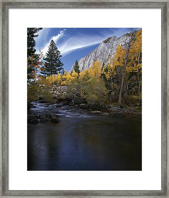 Rock Creek Canyon Gold Framed Print