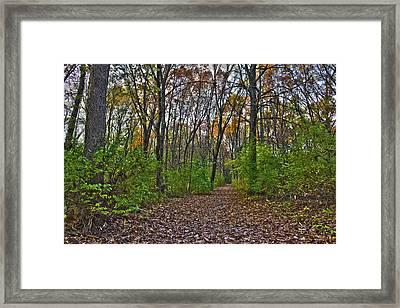 Rock Cut Path 2 Framed Print by Jim Baker