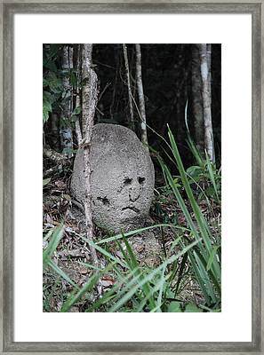 Rock Face Framed Print