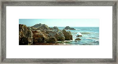Rock Formations At A Coast, Bird Rock Framed Print by Panoramic Images