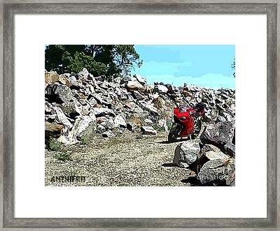 Rock Garden Framed Print by AntiHero