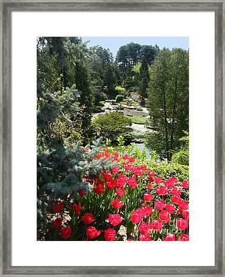 Rock Garden - Hamilton - Ontario Framed Print by Phil Banks