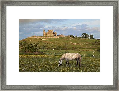 Rock Of Cashel_ County Tipperary Framed Print by Carl Bruemmer