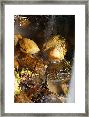 Rock On Framed Print