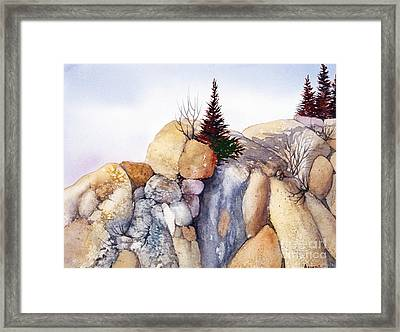 Rock Patterns Turnagain Framed Print by Teresa Ascone